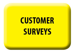 Customer Surveys Download
